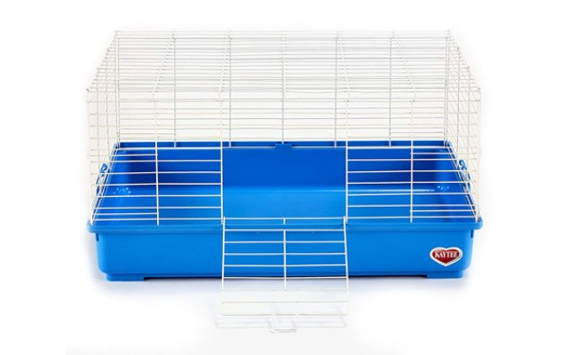 kaytee cage for guinea pig