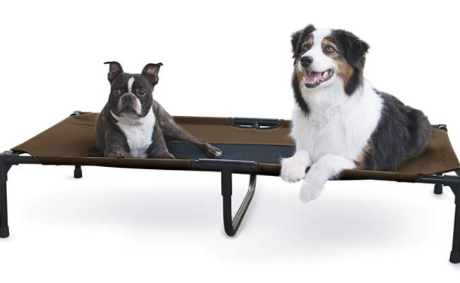 kh pet product elevated dog bed