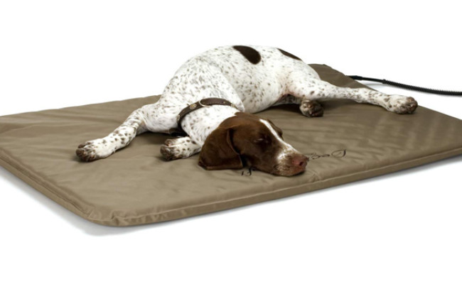 kh pet products heated dog bed with cover