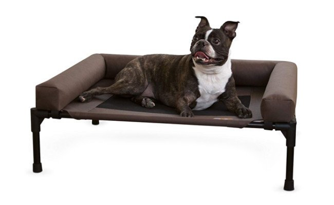 kh pet products raised dog bed