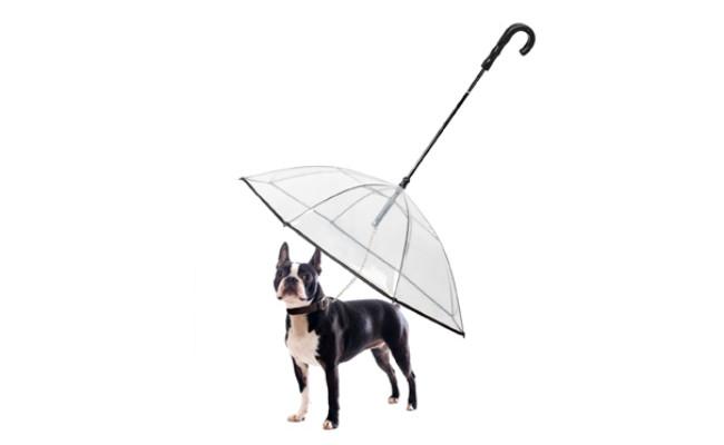 k&l pet dog umbrella