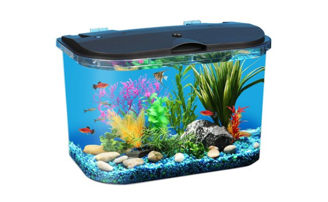 koller product panaview aquarium