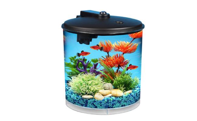 koller products fish tank