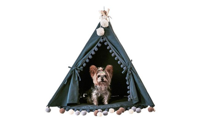 little dove teepee tent for dogs