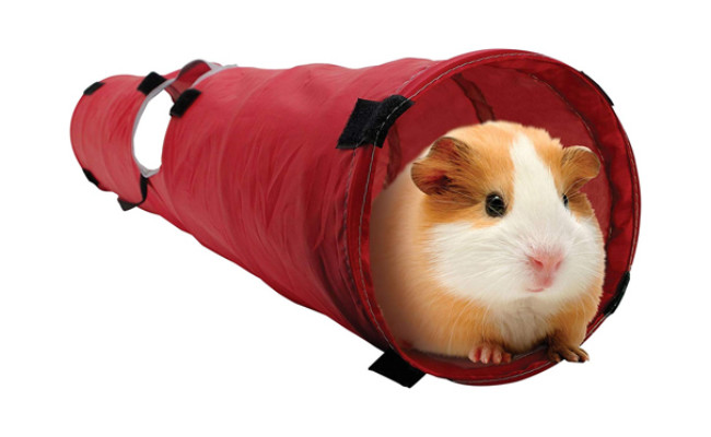 living world pet tunnel