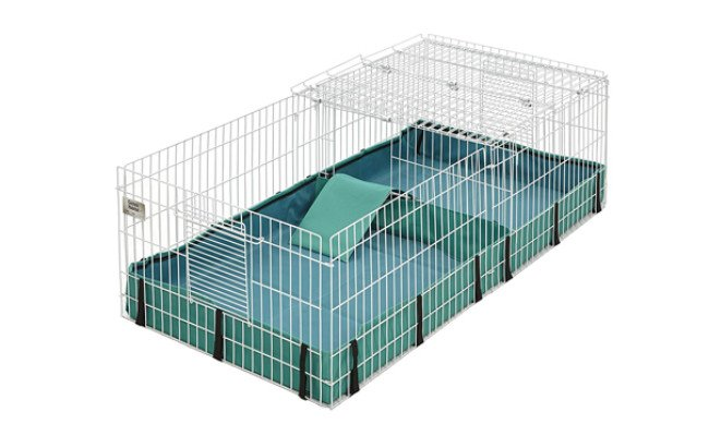 midwest guinea pig cage