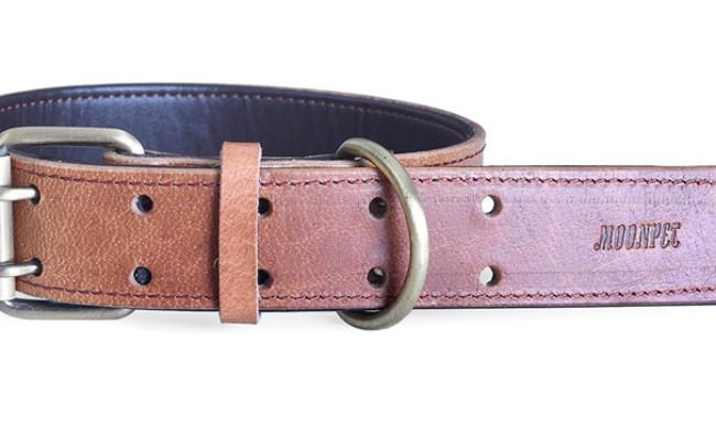 moonpet dog leather collar