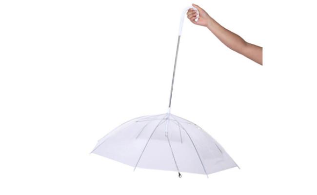 moore dog umbrella