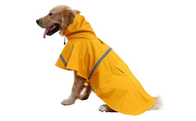 nacoco dog raincoat