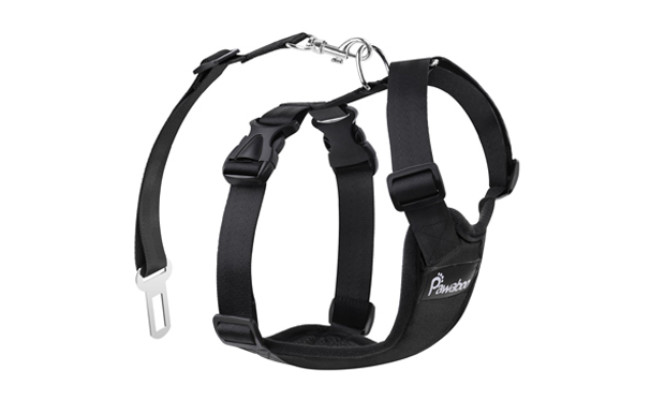 pawaboo safety harness