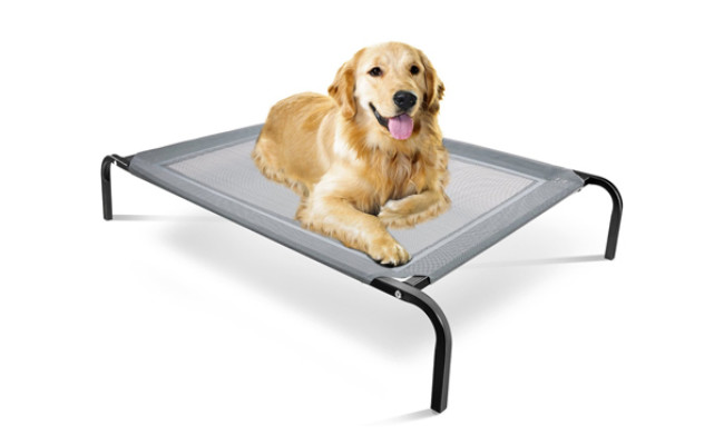 paws and pals elevated dog bed