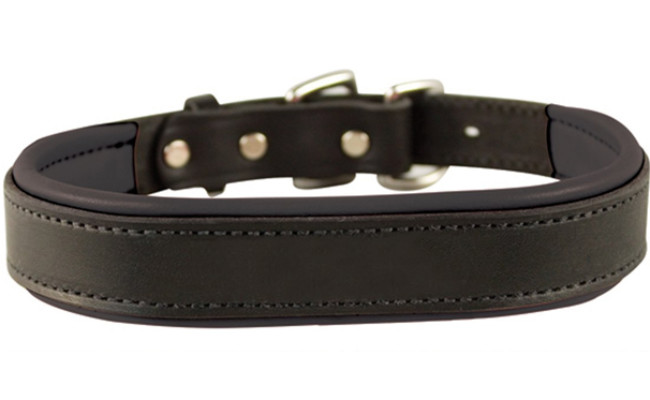 perris dog leather collar
