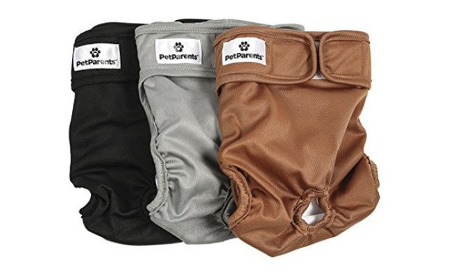 pet parents premium dog diapers