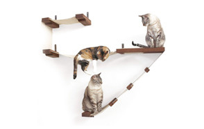 premium pick cat hammock