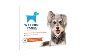 premium pick dog dna test