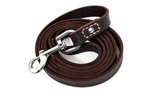 premium pick dog leash
