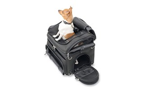 premium pick motorcycle dog carrier