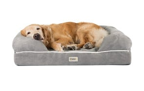 premium pick washable dog bed