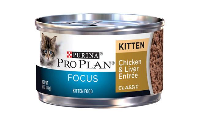 purina pro plan focus kitten food