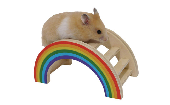 Rosewood Pet Rainbow Play Bridge