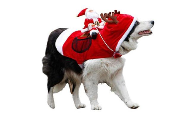 royalwise santa dog outfit