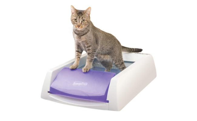 scoopfree cat litter box