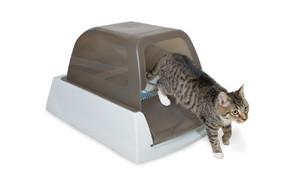 top pick self cleaning cat litter box