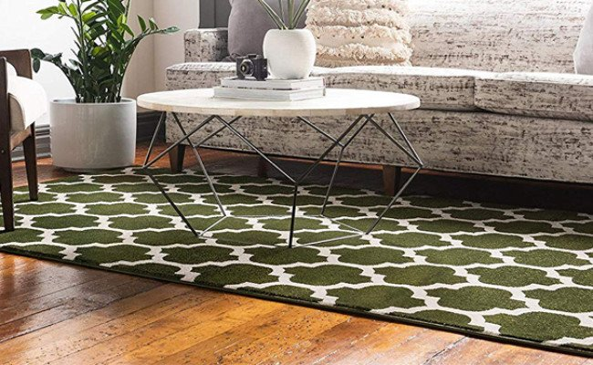 unique loom area rug for dogs