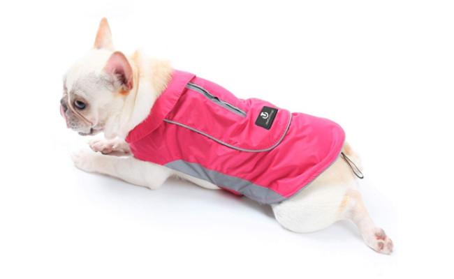 useful thingy pet raincoat