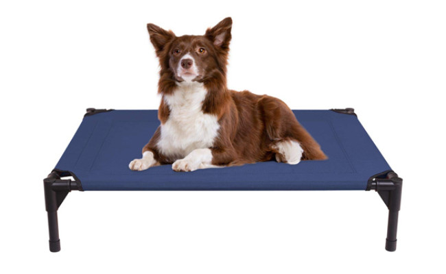 veehoo raised dog bed