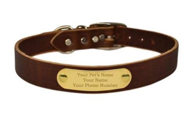 warner dog leather collar
