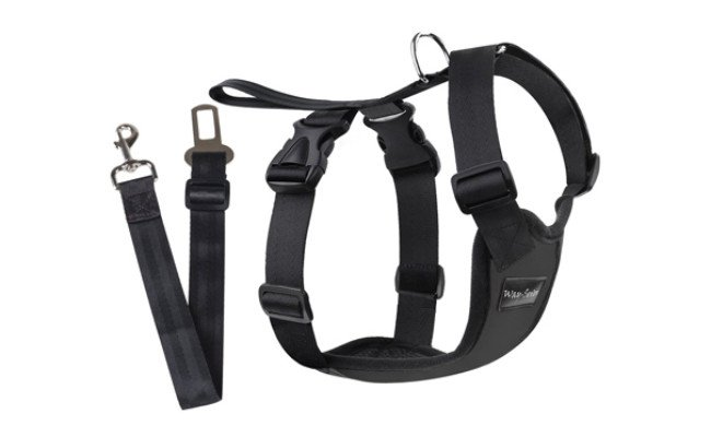 way seven dog seat belt
